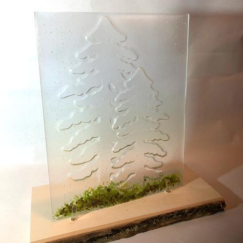 Mountain Pine Impressions