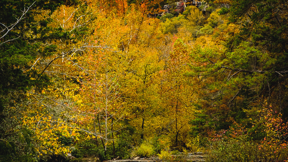 Haw Creek Falls Recreation Area 2-4214.jpg