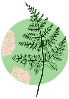 Rose and Fern Counseling logo, a green fern leaf over pink roses.