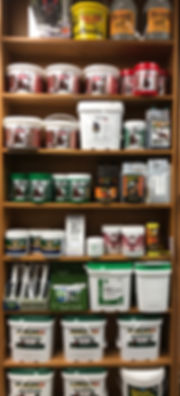 supplements 2.jpg
