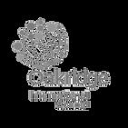 Oakridge-International-School-logo-1_edi