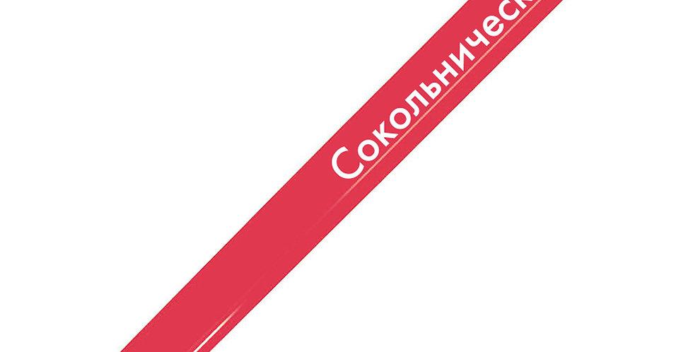 """Ручка шариковая """"Сокольническая"""""""