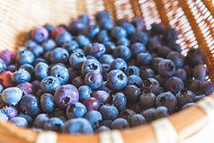 1153_fruit_blueberry_9562-973x649.jpg