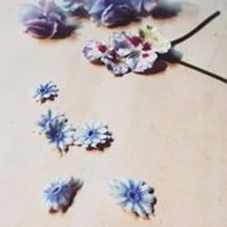 bloemetjes verven