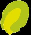petale jaune2.png
