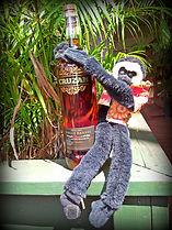 monkey w rum.jpg