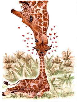 Giraffes.jpeg