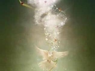 Το φως της συγχώρεσης