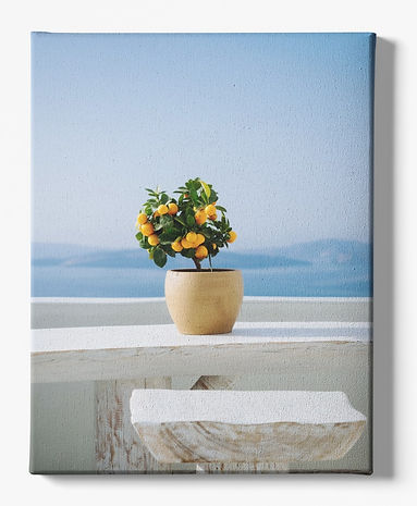 canvas-art-mockup-featuring-a-plain-colo