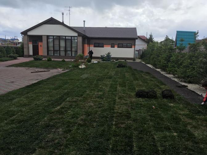Рулонный газон на Тополинке