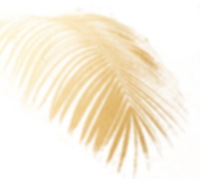 gold-palms.png
