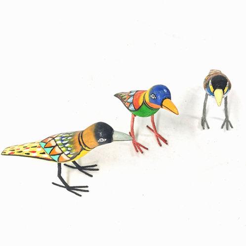 Bird -Coloured