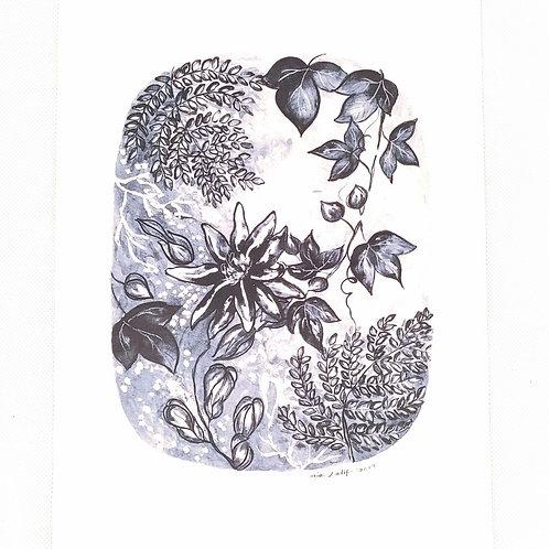 Artprint - Passiflora Lady*