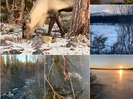 Een reis vol reflectie: van Corona naar Kiruna