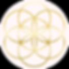 Logo of Seed of Life Healing