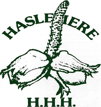 Haslemere Hash House Harriers Logo