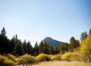 Lower Lake Ranch