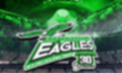 2020 Eagles Logo.png