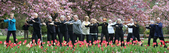 Tai Chi Swindon