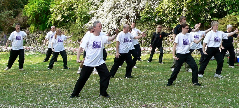 World Tai Chi Day swindo