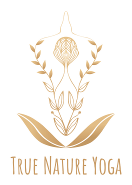 True Nature Yoga logo champagne gradient