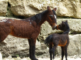 Namib Mare and Foal
