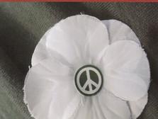 Campagne du coquelicot blanc en souvenir de toutes les victimes des guerres