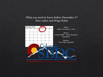 SBDC Larimer County Training