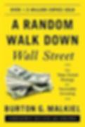 a-random-walk-down-wall-street.jpg