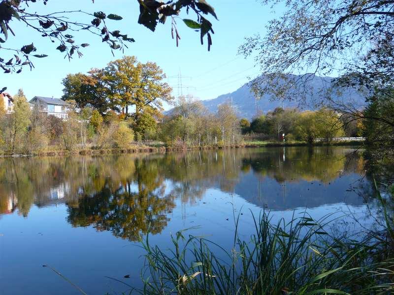 Rauhenzeller See | 3 Gehminuten