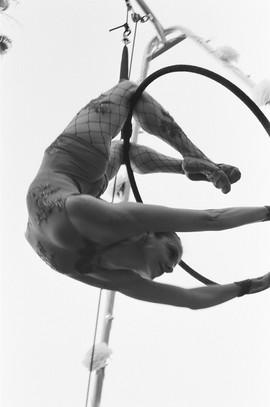 Lauren Avon for Aerialogists