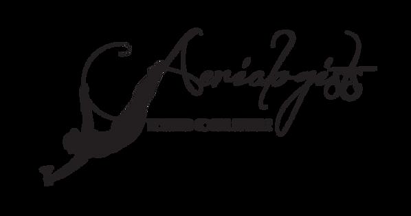 Aerialogists LLC Logo