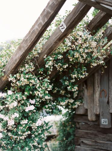 0001-Cielo Farms-Malibu Wedding-When He