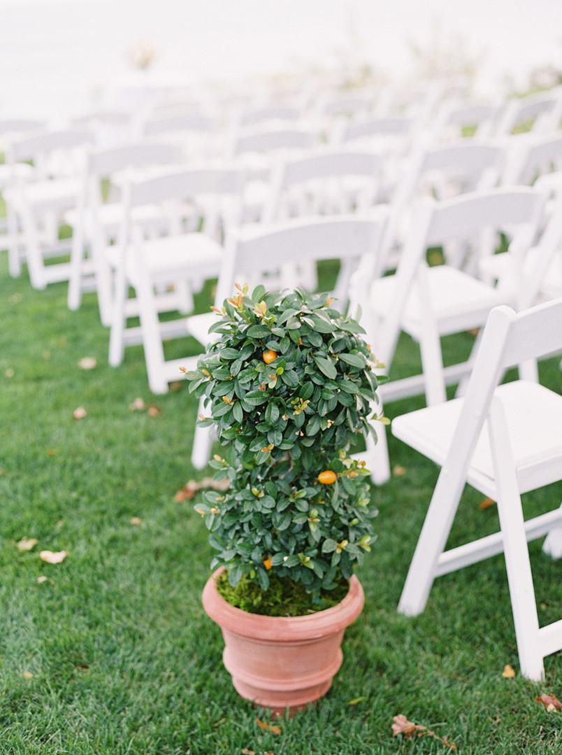 0019-Anna-Dave-Wedding-When-He-Found-Her
