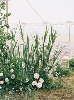0130-Cass-Mark-Married-Outdoor-Wedding-P
