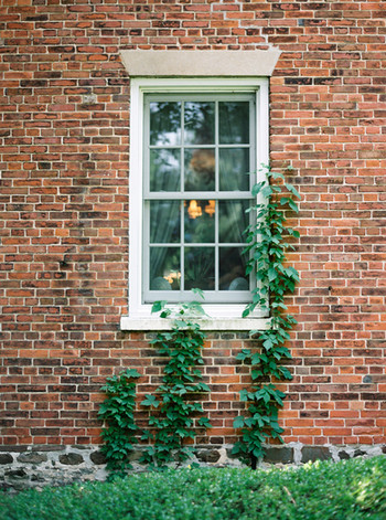 0012-When-He-Found-Her-Vineyard-Wedding-