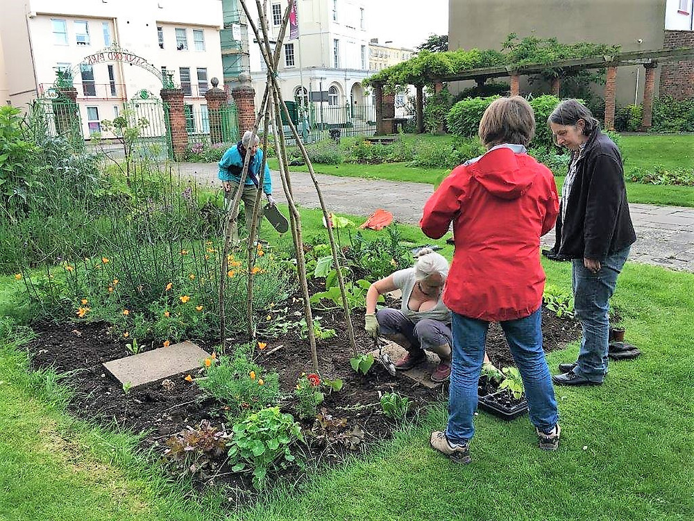 Annecy Edible Garden in Sandford Park - volunteer session