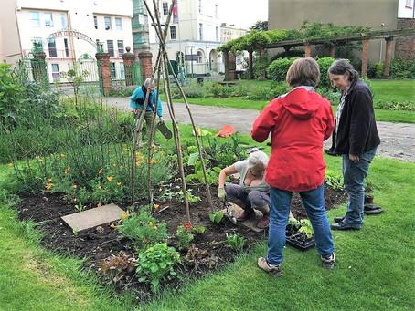 Urban Edible Gardens - Annecy in Cheltenham UK