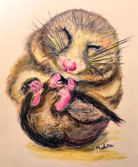 Adorably Dormouse charcoal, watercolours and pastels by Michelle Thomasson