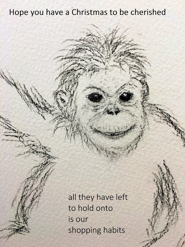 Orangutan Christmas Greeting in Charcoal by Michelle