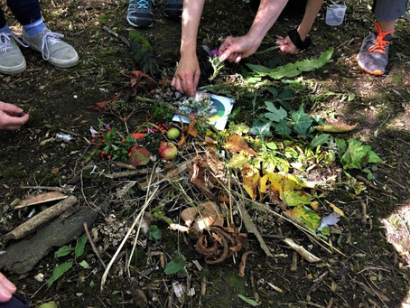 Colour in nature walk - see, find, create!