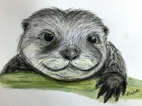 Otterly Lovely and Adorably Dormouse