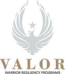 Valor Logo.jpg