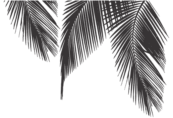 palm_background_green_2.png