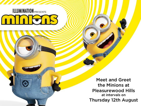 Meet the Trolls and Minions this summer!