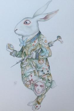 What Maketh A Rabbit