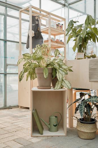 나무와 식물의 조화