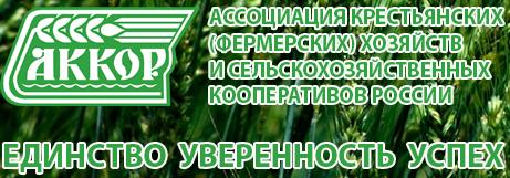 www.akkor.ru.png