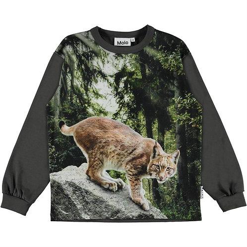 """""""Rin"""" Jungs T-shirt Molo"""