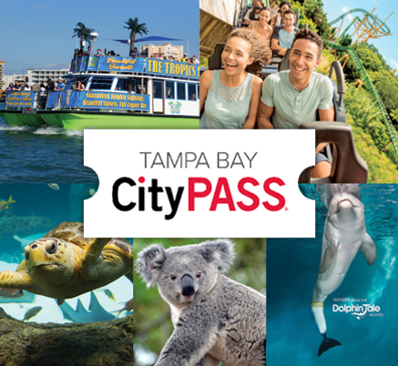 TampaBay-Collage_435x400[91].png